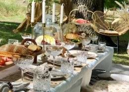 picnic 2 1