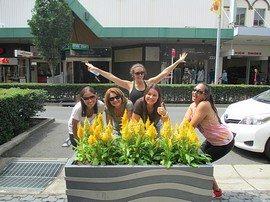Amazing Race Team Building Parramatta  05